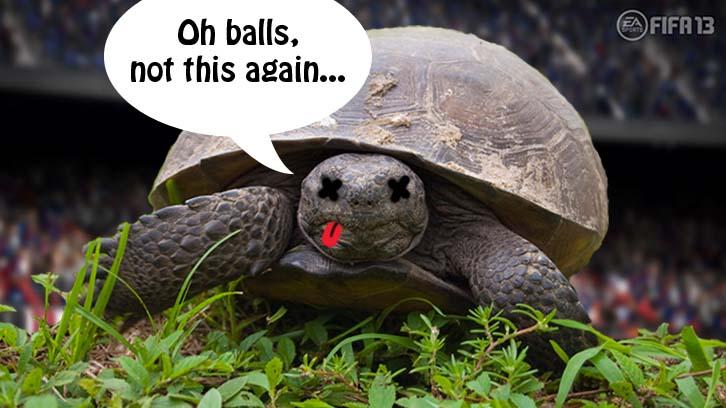 FIFA 13 tortoise