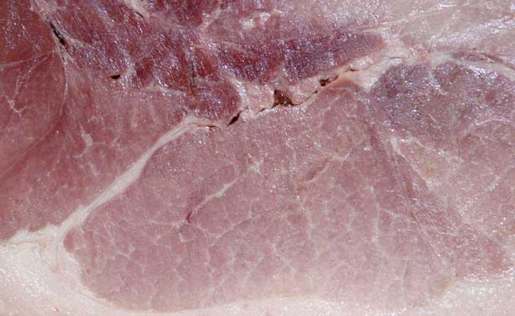Ham photo